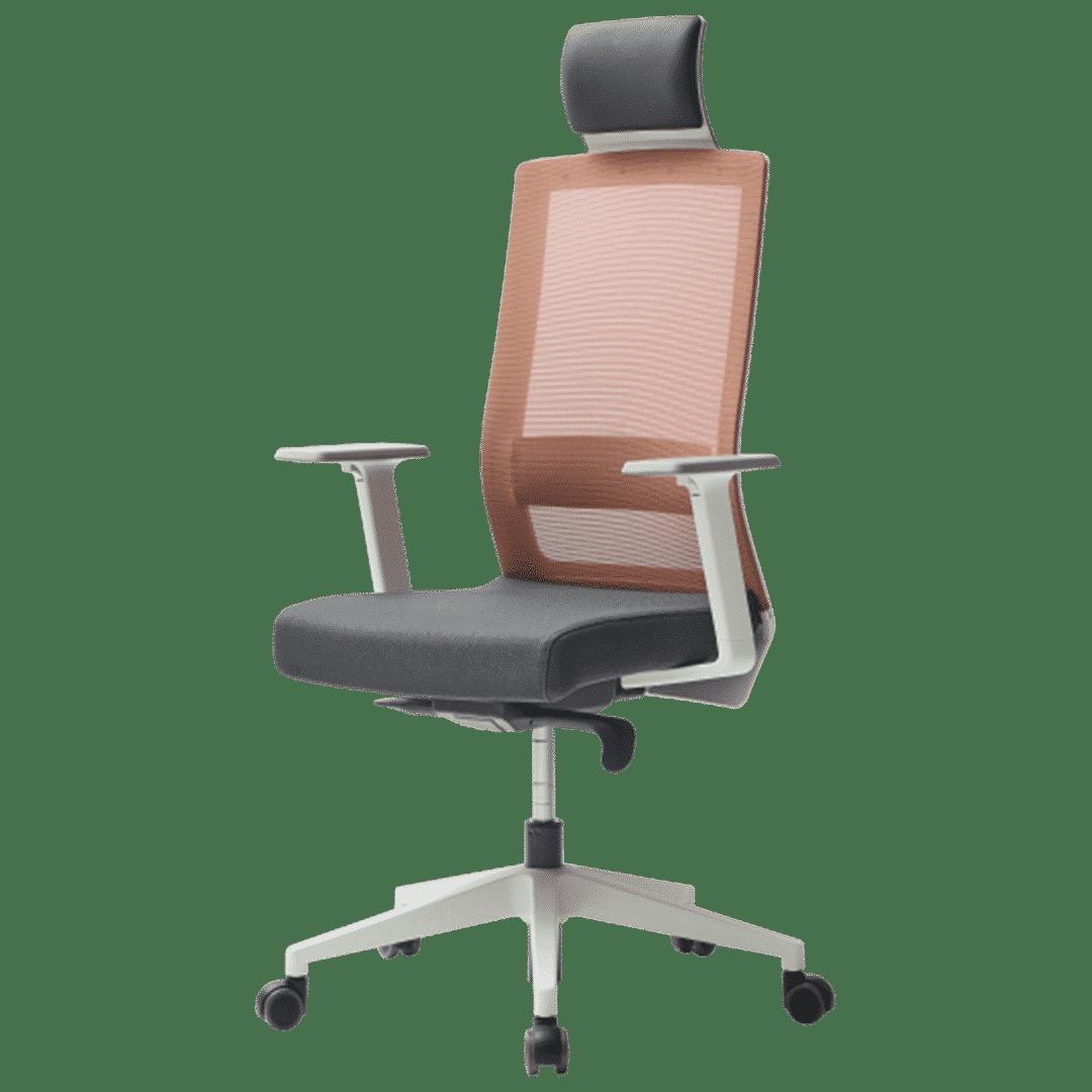 SQW RD2 ergonomic furniture
